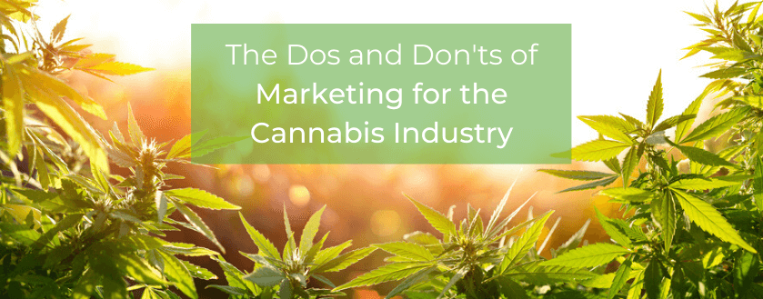 marketing for the cannabis industry