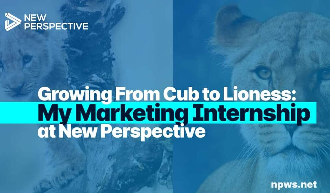 My Marketing Internship: Growing From Cub to Lioness