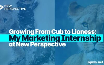 Growing From Cub to Lioness: My Marketing Internship at New Perspective